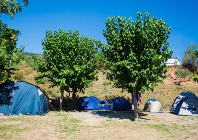 camping-el-pasqualet-barcelona-parcela-tenda-3