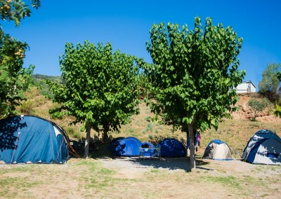camping-pasqualet-barcelona-caldes-montbui-095