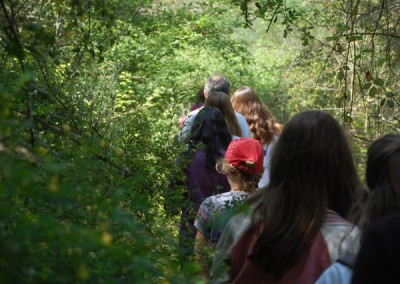 Descobrim el bosc