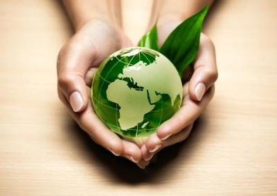 Gincana medio ambiente